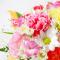 flower209_R